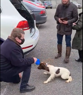 Midleton, Family Have Their Dog Recovered By Gardai After Been Found In U.K