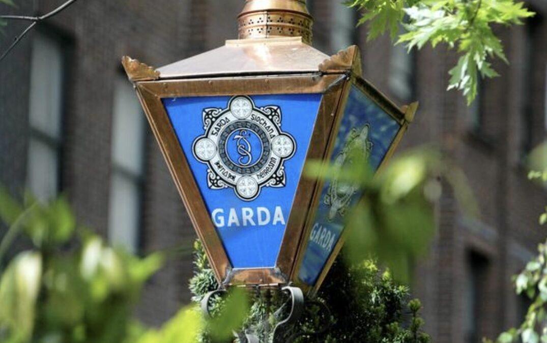 Machete And Shotgun Used In Robbery In  Ballinhassig